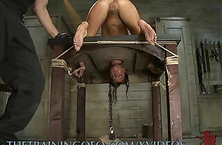 The Training of a Kinky Slut